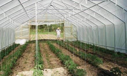 Magyar Kertészeti Tanács alapszabály tervezete