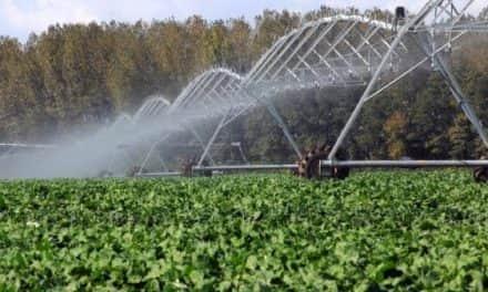 Módosult a Mezőgazdasági vízgazdálkodási ágazat fejlesztése című pályázati kiírás