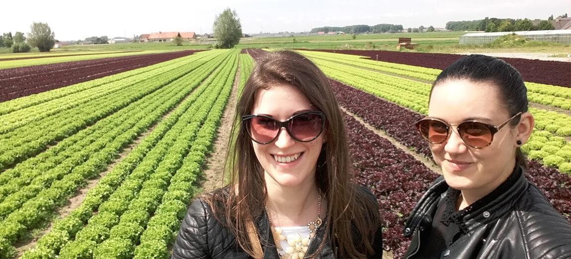 Szakmai látogatás tapasztalatai Flandriában
