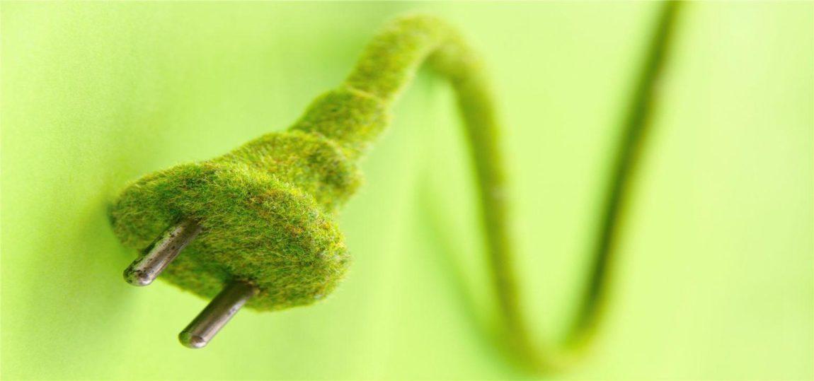A FruitVeB.hu szerverei 100%-ban megújuló energiát használnak