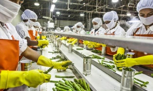 Új élelmiszeripari-borászati pályázat készül