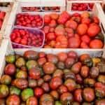 Almeríában árumegsemmisítéssel demonstrálnak a termelők