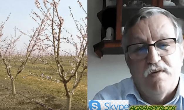 Rendkívüli interjú Ledó Ferenccel, a FruitVeB elnökével