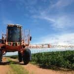 Új lehetőség a kertészek kezében a Benevia® rovarölő szer (X)
