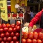 Franciaország leállítja a marokkói paradicsom importját