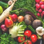 FruitVeB Bulletin 2019 – Bevezető