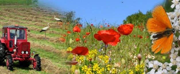 Változott az AKG programban nem használható növényvédőszer-hatóanyagok listája