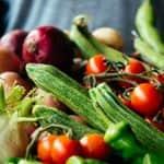 FruitVeB Bulletin 2019 Zöldségtermesztés III. rész