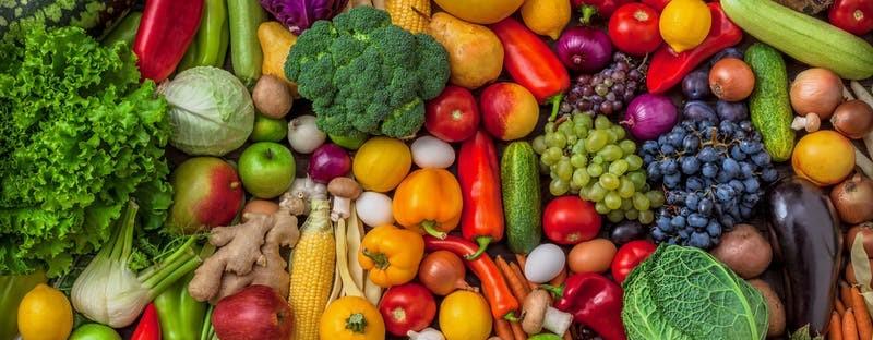 FruitVeB Bulletin 2019 – Zöldség-gyümölcs termőterületek alakulása 2011-2019