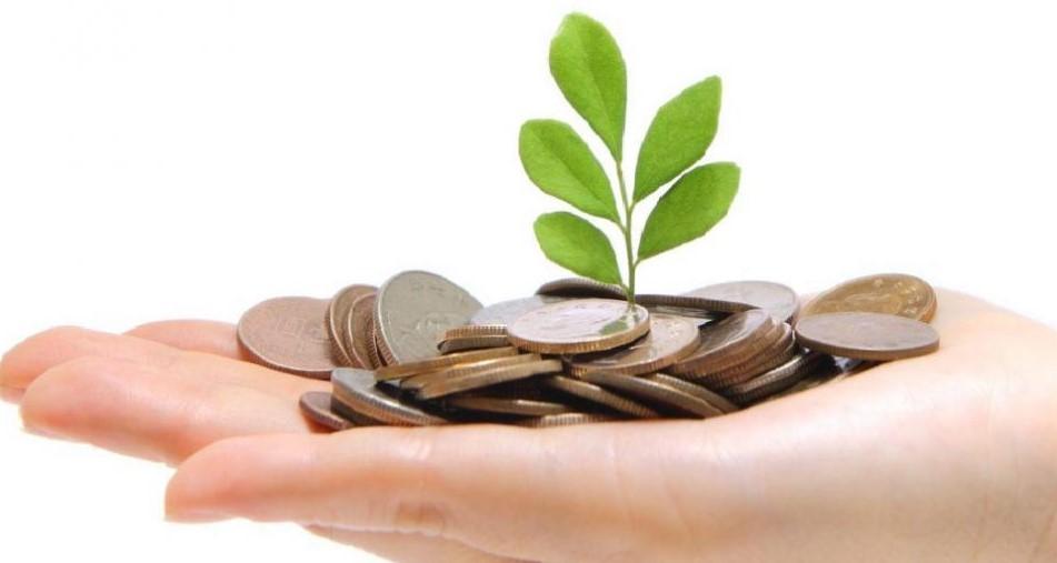 Növeli a hazai zöldség-gyümölcskínálatot az új kertészeti beruházásokat segítő pályázat