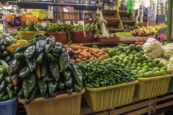 Megkezdődött a 2021/22-es zöldségszezon Almeriában